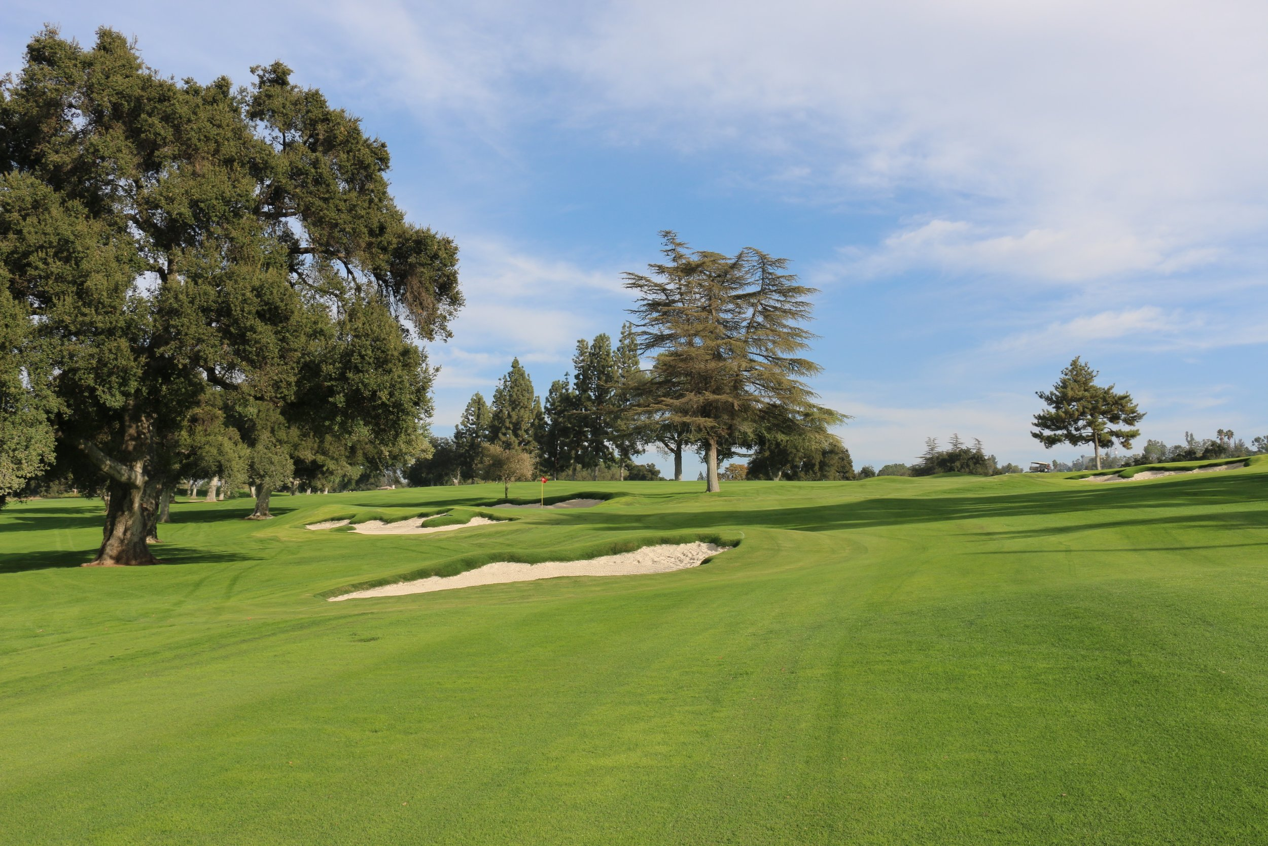 Another view from further down the fairway not long after grow-in. (Image courtesy of Todd Eckenrode, Origins Golf Design.)