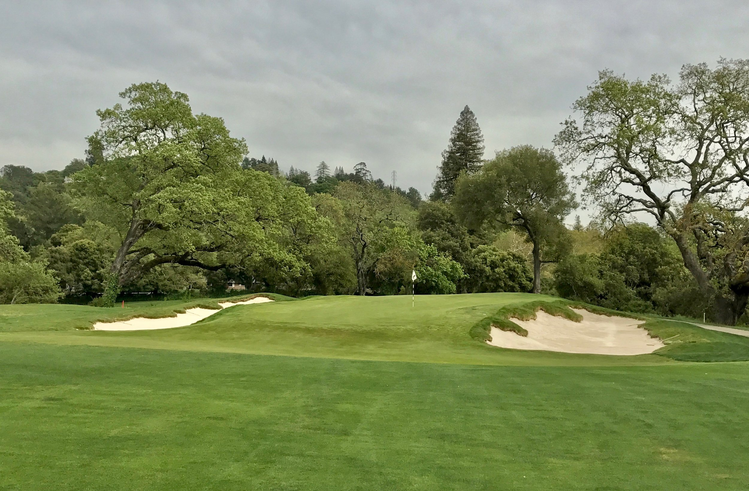 """The 14th angled 14th green, one re-worked after A.W. Tillinghast visited the course, involved one of the more subtle but appealing changes. By lowering the front left of the green, raising the the back of the left bunker, and dialing the horizon lines, the green is now profiled against the bunker and appears to """"hover."""""""