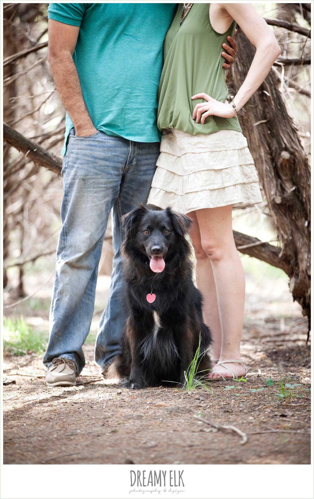 6 mallory and esteban engagements, walnut creek park, austin, texas