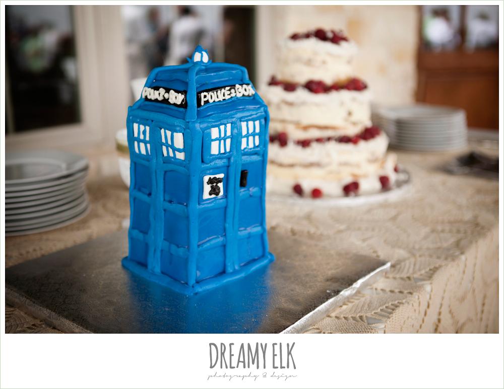 dr. who cake, tardis