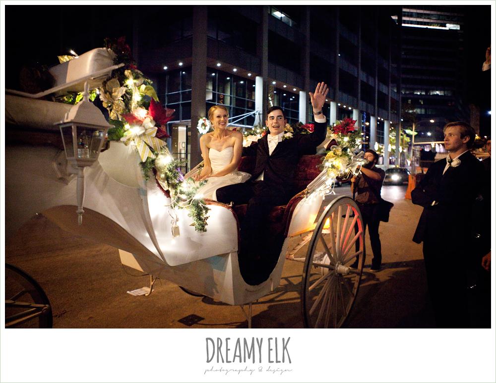 horse drawn carriage, wedding getaway, winter wedding, austin wedding photographer, dreamy elk photography and design