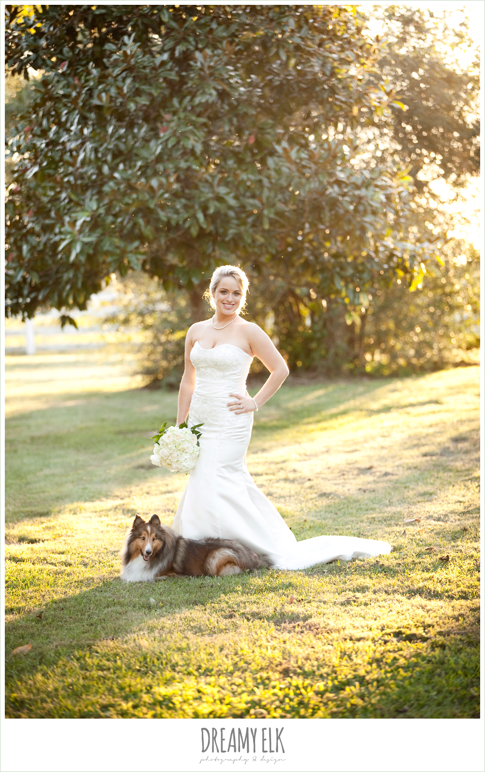bridal photo with dog, trumpet satin wedding dress, white wedding bouquet {dreamy elk photography and design}