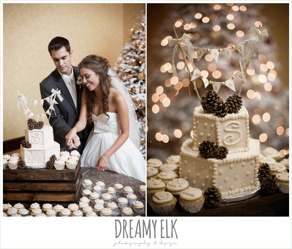 bride and groom cutting the cake, fabulous fare cakes, christmas wedding {dreamy elk photography and design} photo