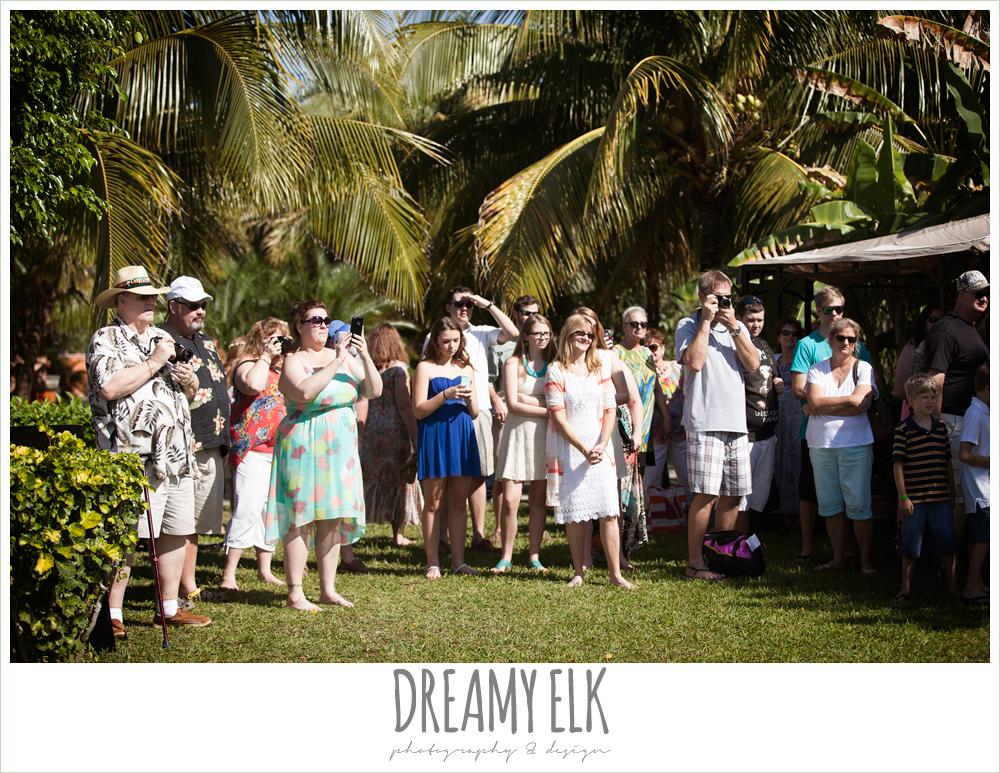 wedding guests, destination wedding, cozumel {dreamy elk photography and design} photo