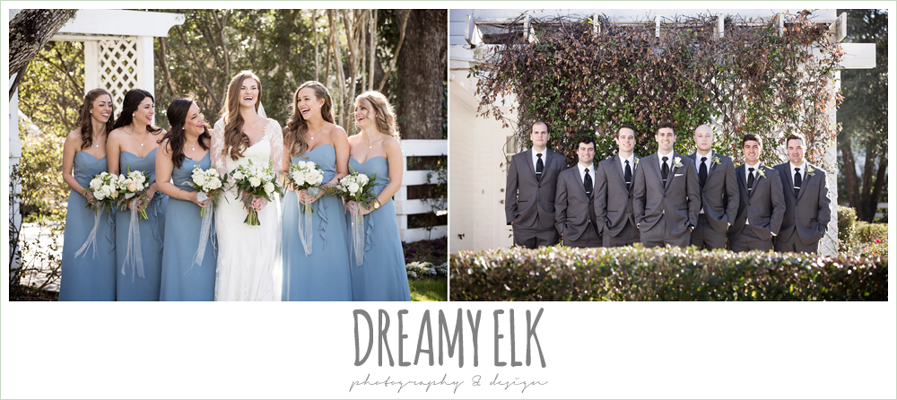 groom and groomsmen in dark gray suits, bride and bridesmaids, long alfred angelo bridesmaids dress, wedgewood blue, long sleeve lace wedding dress, long lace veil, white wedding bouquet, tricia barksdale designs, white house, morning winter january wedding, ashelynn manor {dreamy elk photography and design}