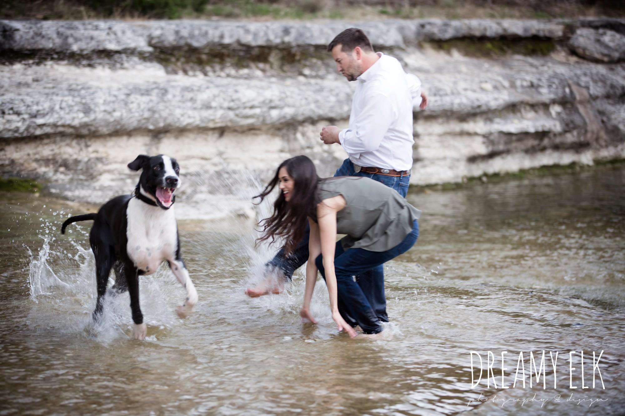 great dane, fun anniversary photo shoot with dog, bull creek park, austin, texas {dreamy elk photography and design}