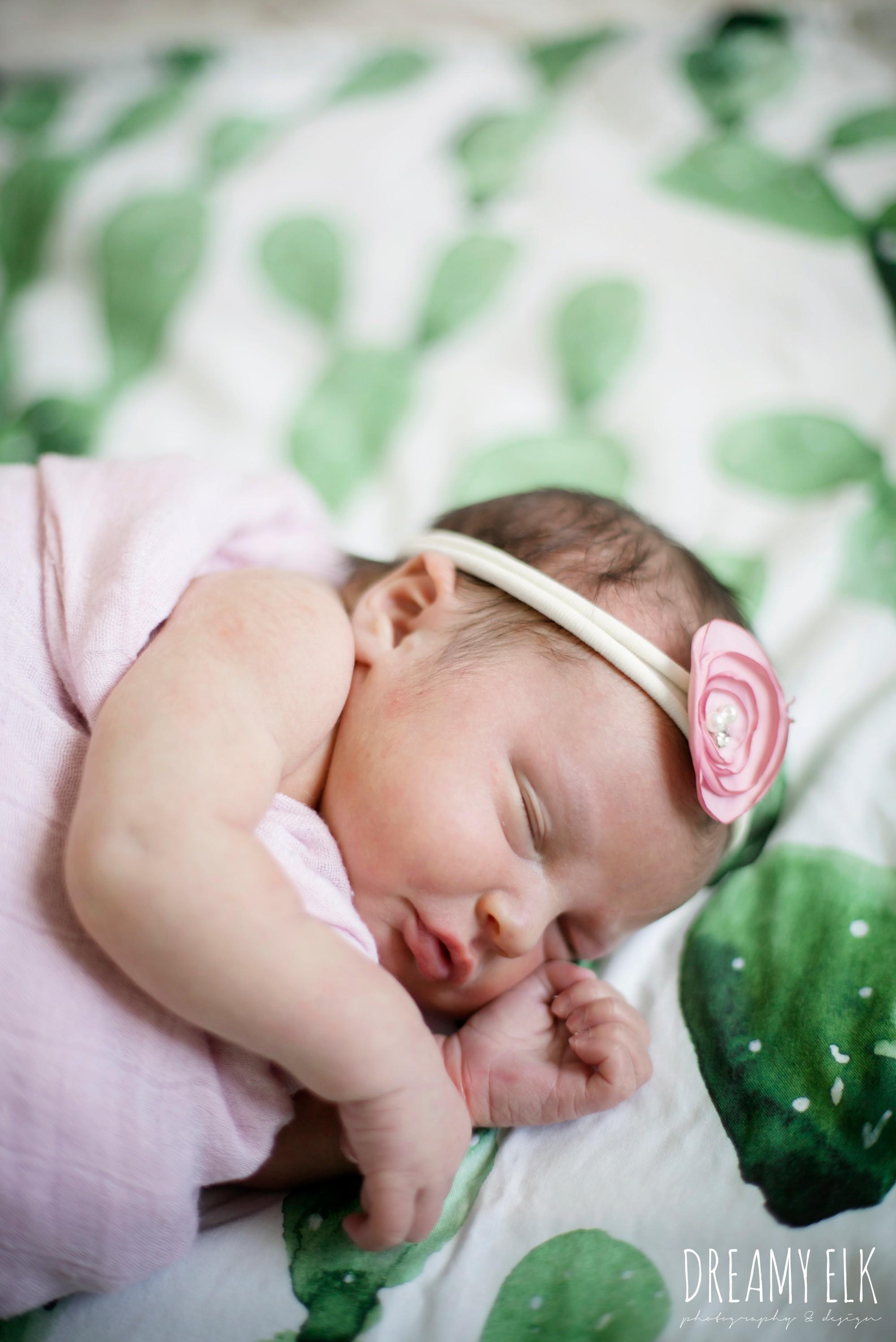newborn baby girl photo, pink and cactus