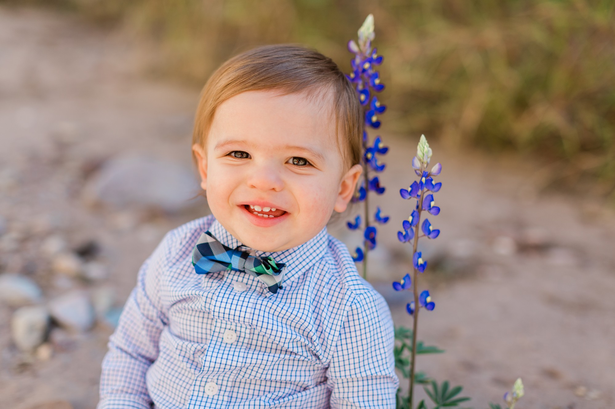 how to take good bluebonnet photos