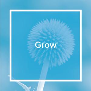 secc-programs-grow.jpg
