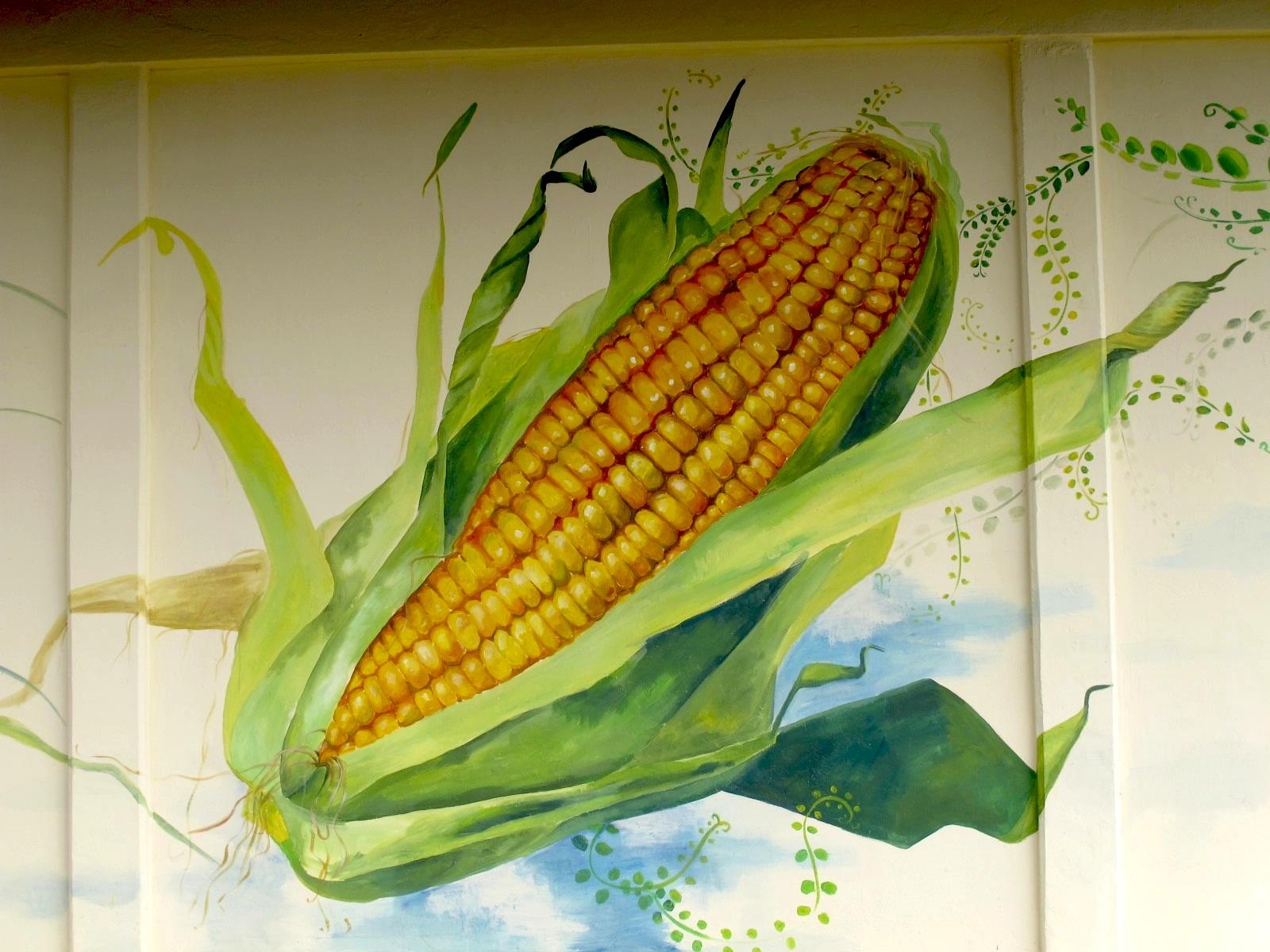 """St. Jude's food store"" - Gulu, Uganda"