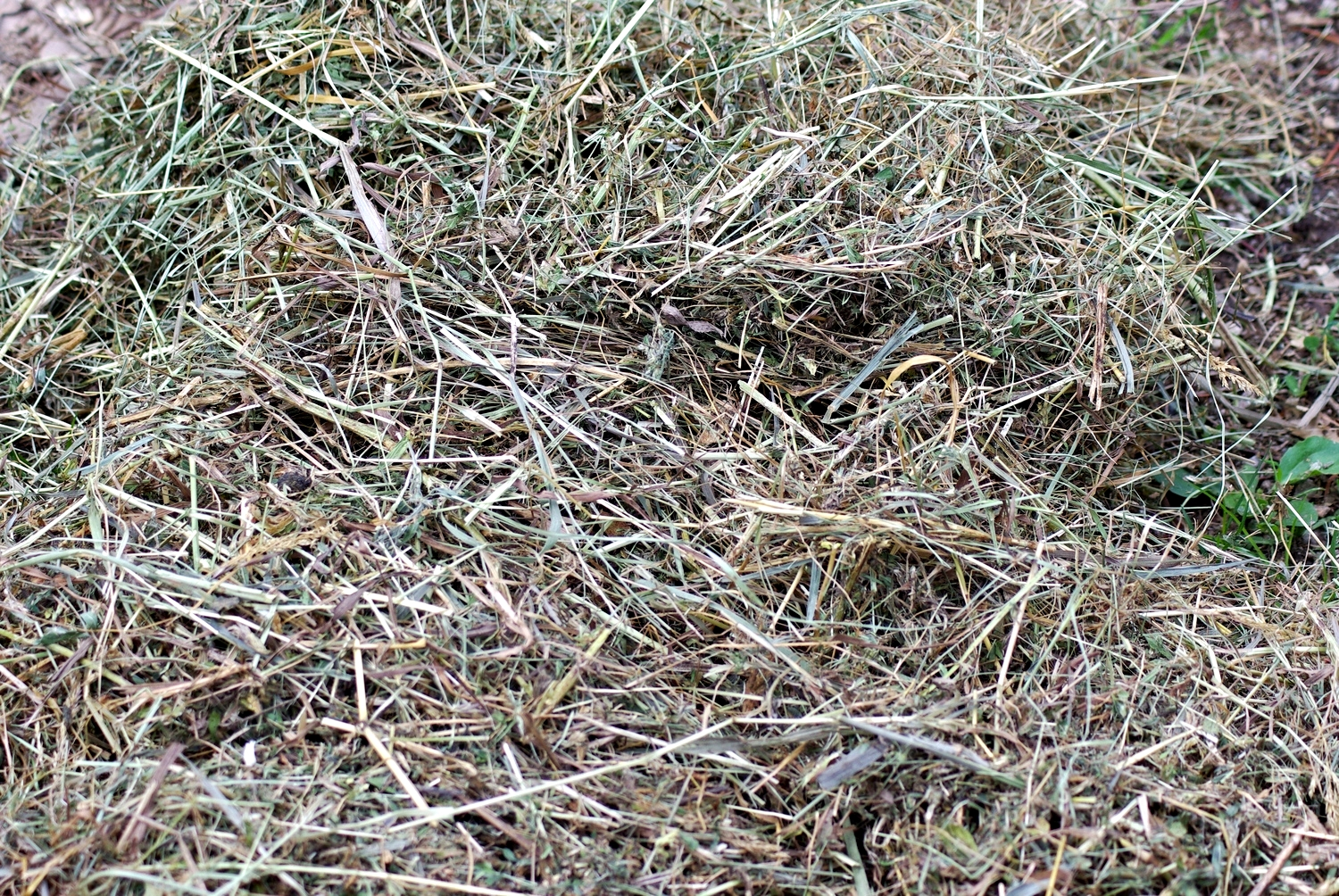 "This is fine hay, and it is  very difficult  for animals to get out of the 1/2"" and 1"" hole hay nets."