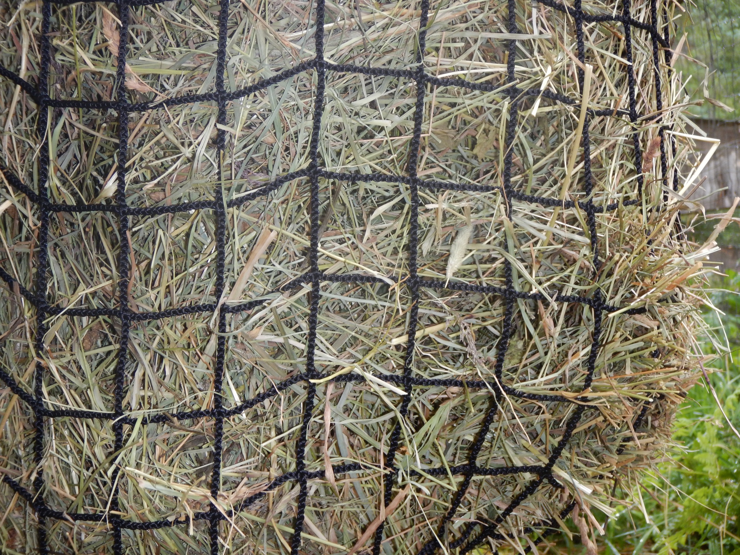 """2"""" net with coarse hay."""
