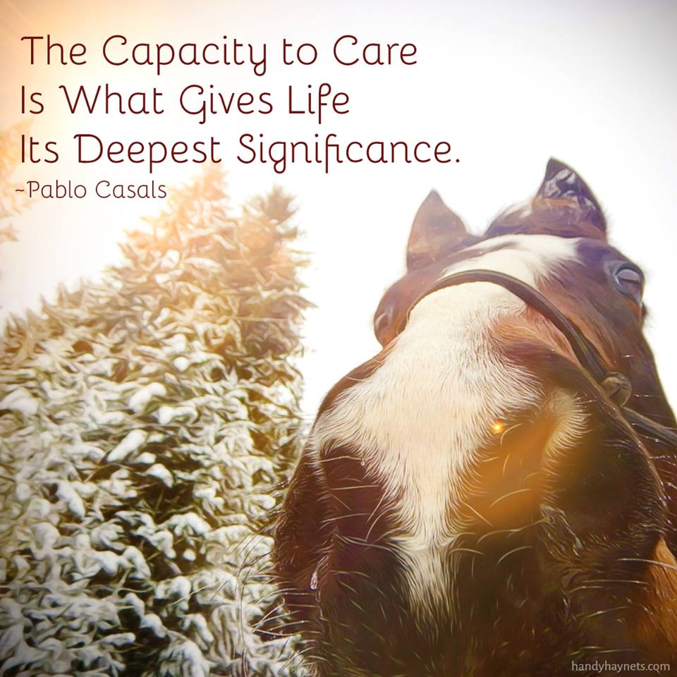 The capacity to care is what gives life its deepest significance.