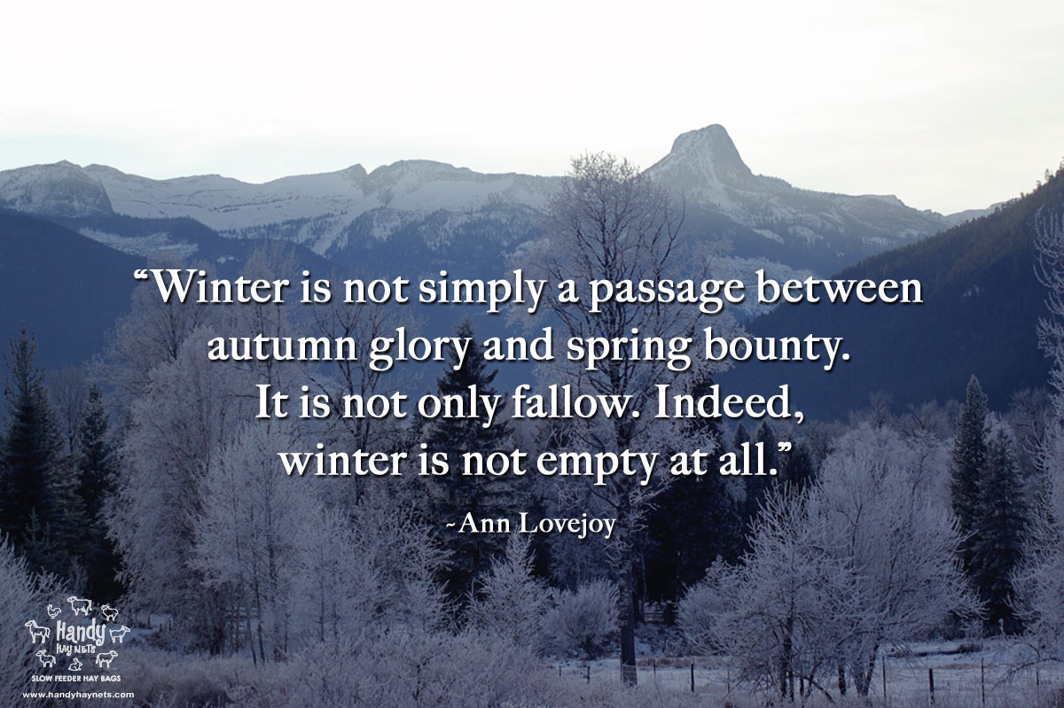 winter-is-not-simply-a-passage.jpg
