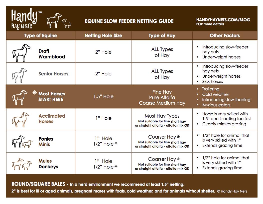Equine Slow Feeder Netting Guide - Guide pour les équidés