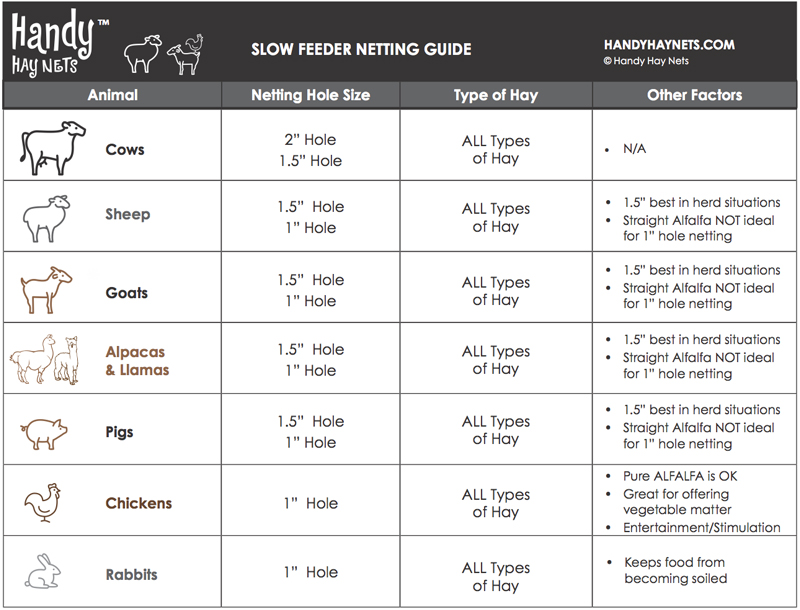 Farm Animal Slow Feeder Netting Guide - Guide pour les animaux de la ferme