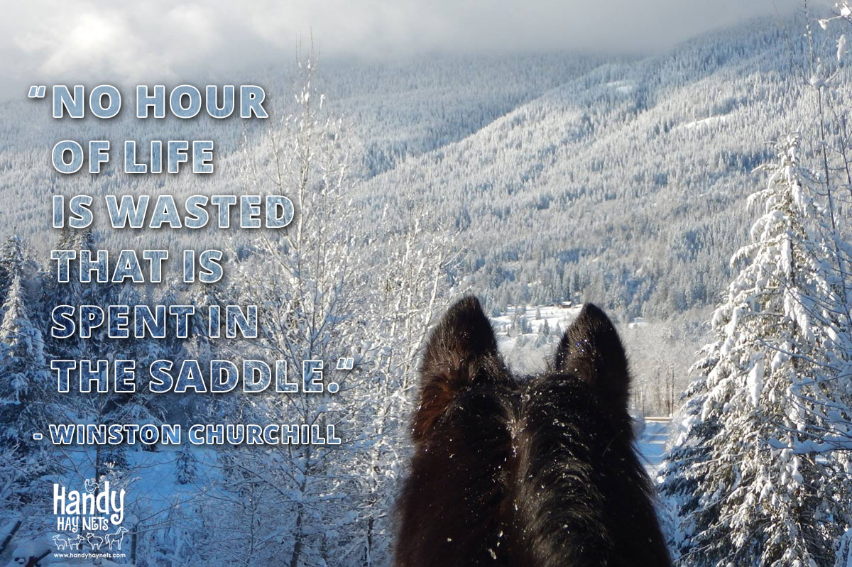 No-hour-of-life-is-wasted-that-is-spent-in-the-saddle.jpg