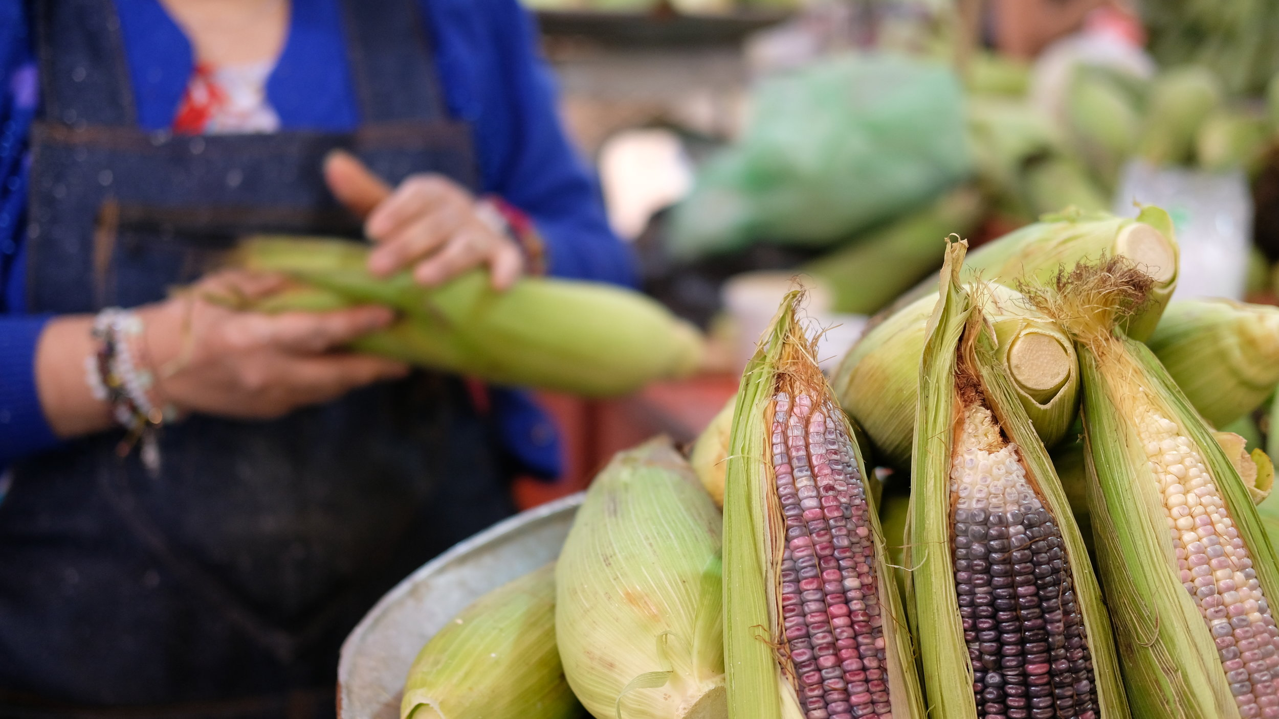 One of the many sellers of heirloom Mexican corn.