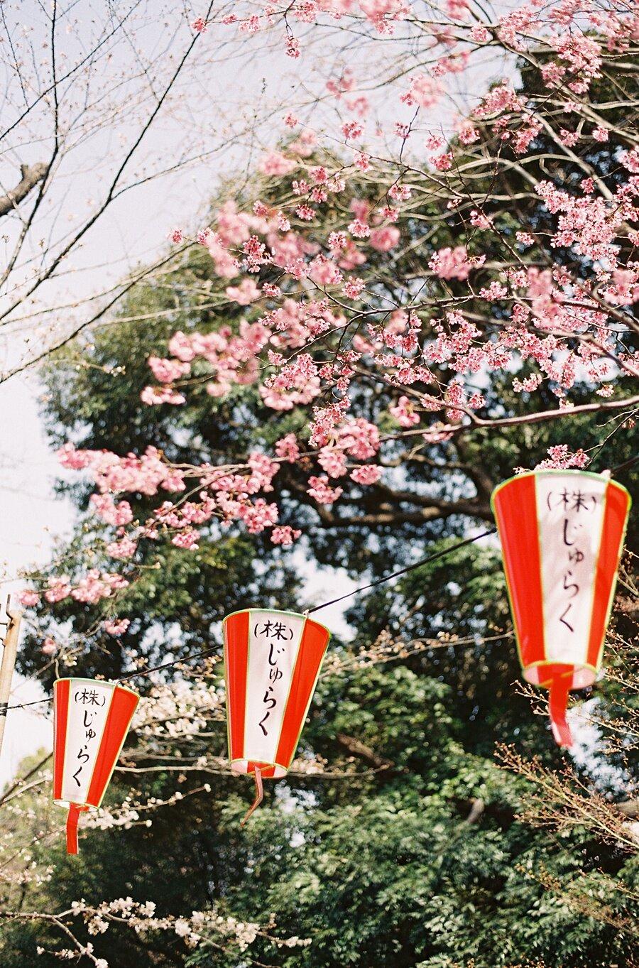 AmandaHartfield_Japan-87.jpg