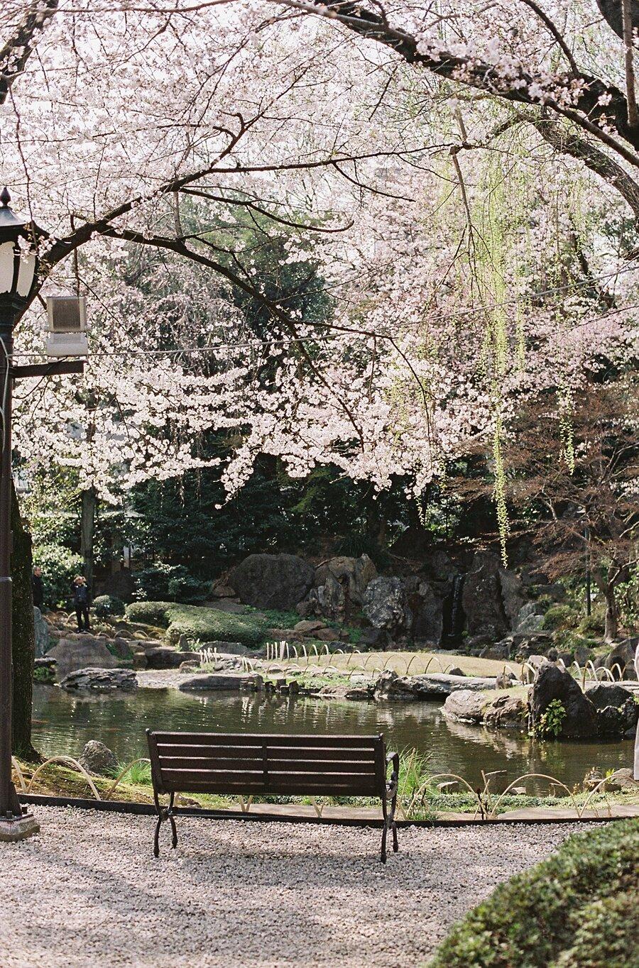 AmandaHartfield_Japan-121.jpg