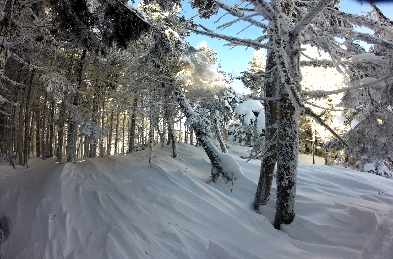 the hike to church- Sugarbush 2/15
