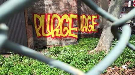 purge its a new day elevated locals