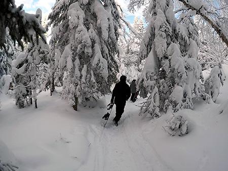 hiking (duh)