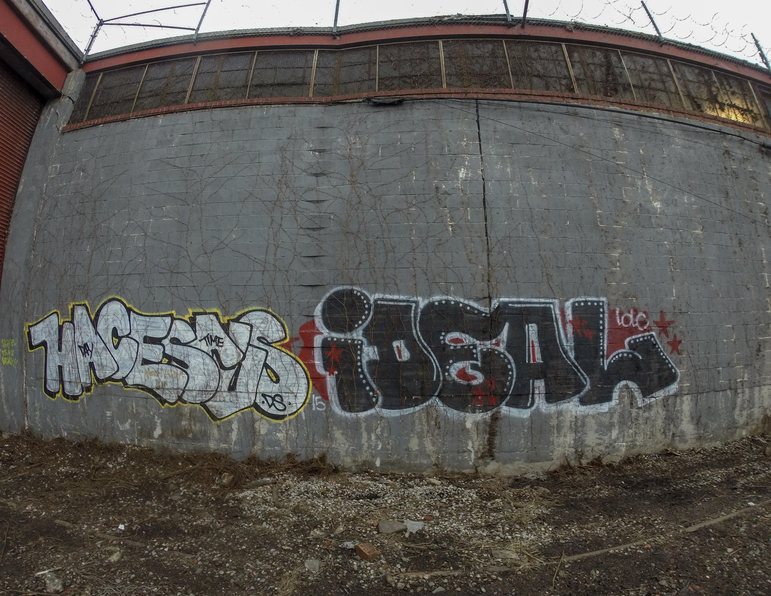 hacesus ideal elevated locals lic.jpg