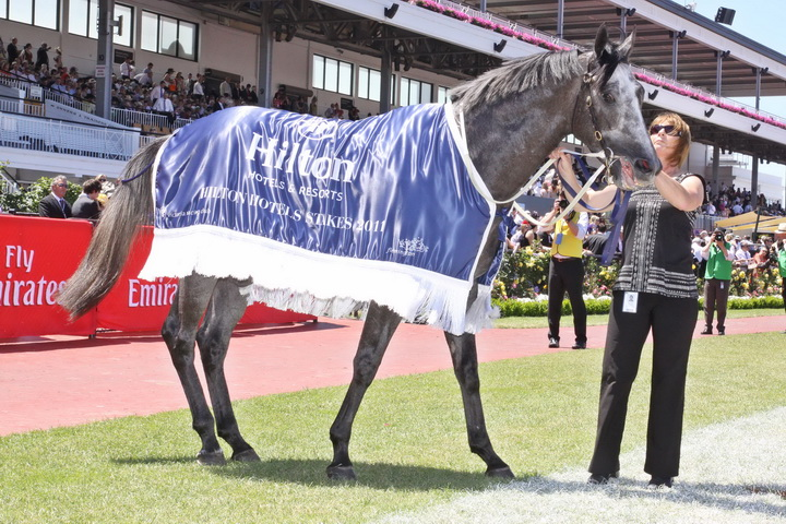Instinction - winner of the Listed Hilton Hotel Stakes (1400m)