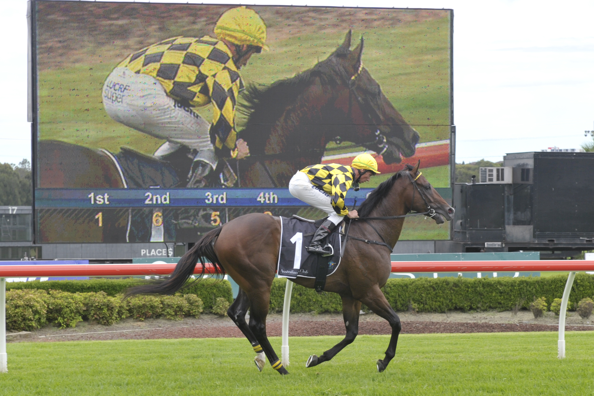 Havana returns to scale after dominant 4 length win at Canterbury on February 12 for Paul Messara & Nash Rawillar