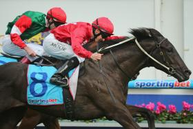 Pressing winning the Listed 2yo Redoute's Choice Stakes at Caulfield for Mick Price and Brad Rawillar today