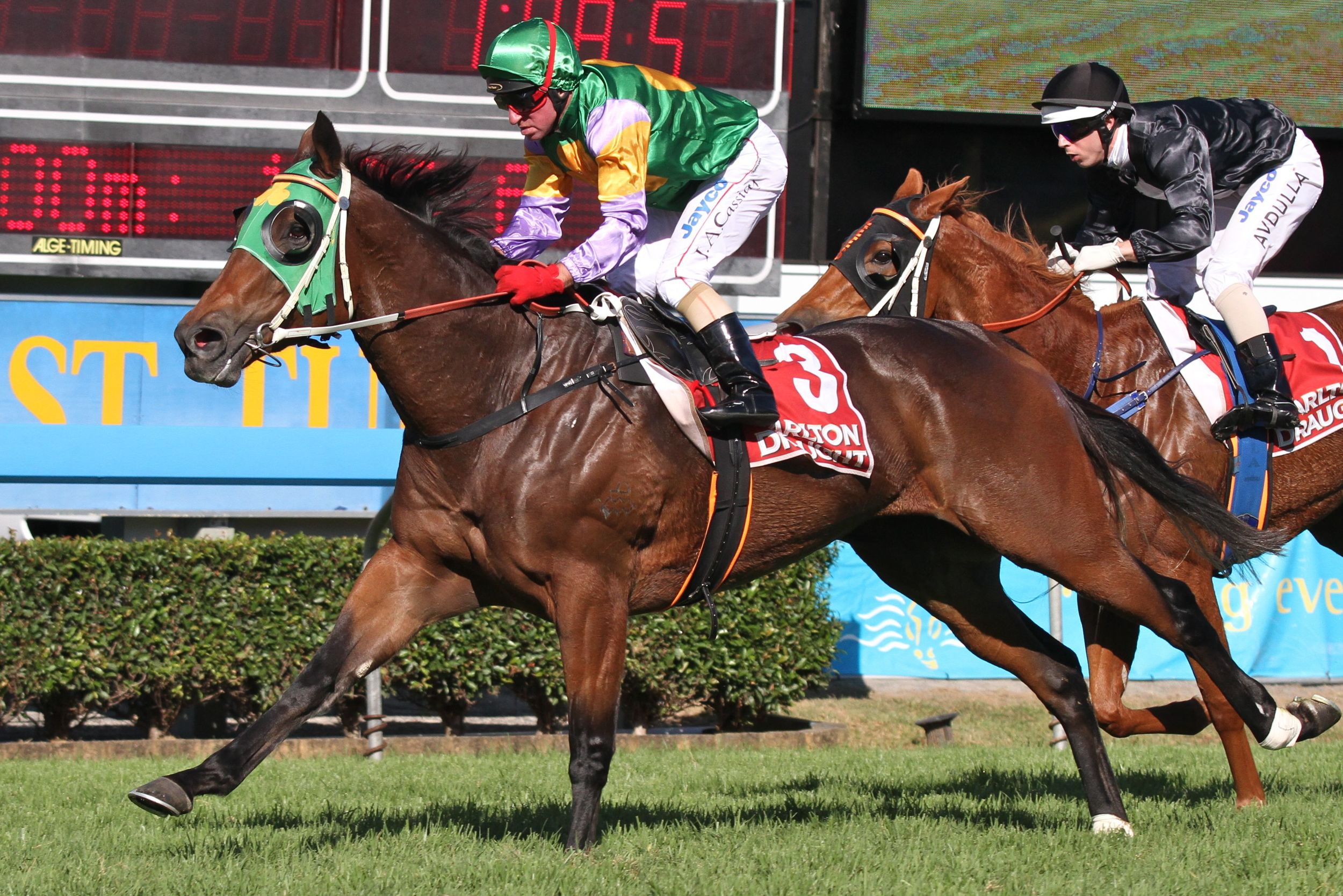 EXPRESS POWER - A $140,000 Magic Millions yearling purchase byBlue Sky Bloodstock As Agent - the well bred mare retires to stud a stakes winner by her sire Snitzel.