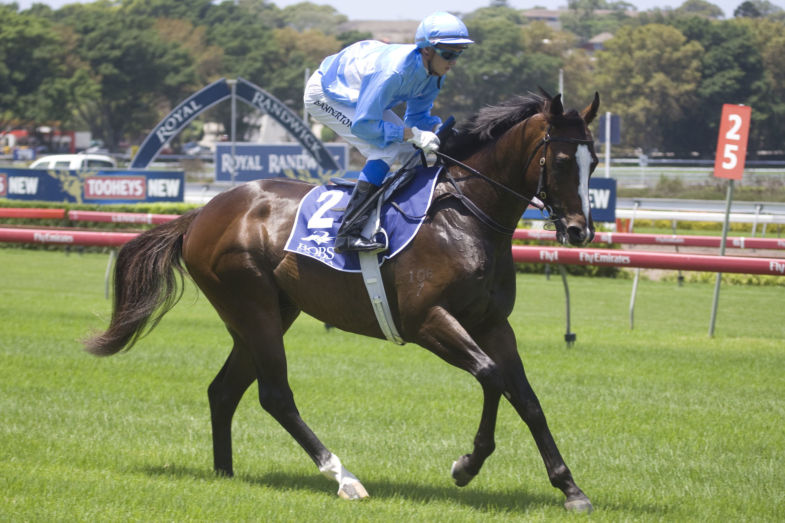 Beneteau (Redoute's Choice x Slice Of Paradise) after his debut win