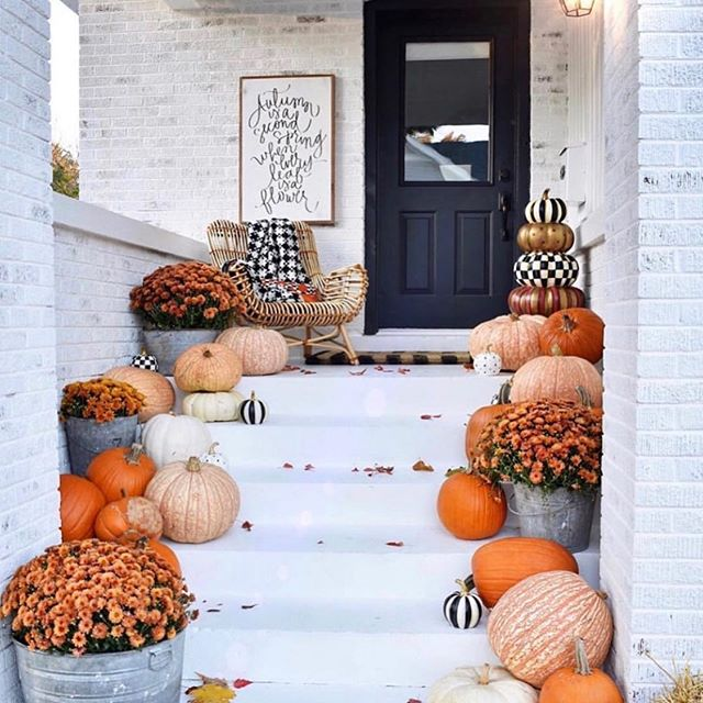 I am loving this white porch and all the pumpkins 🎃 the black door and the wall art by @kindredvintage I only have two Halloween decorations out and three tiny white pumpkins on my mantel.  #inspiration #fall #falldecor #fallporch #pumpkin #porch #porchdecor #halloween #homedecor #exteriordecor #autumn #decor #beautiful #kindredvintage