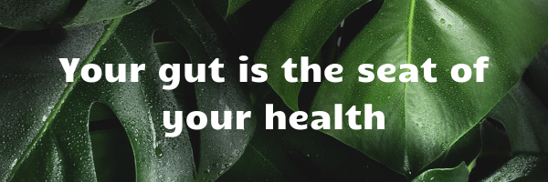 Your gut is the seat of your health (1).png final.png