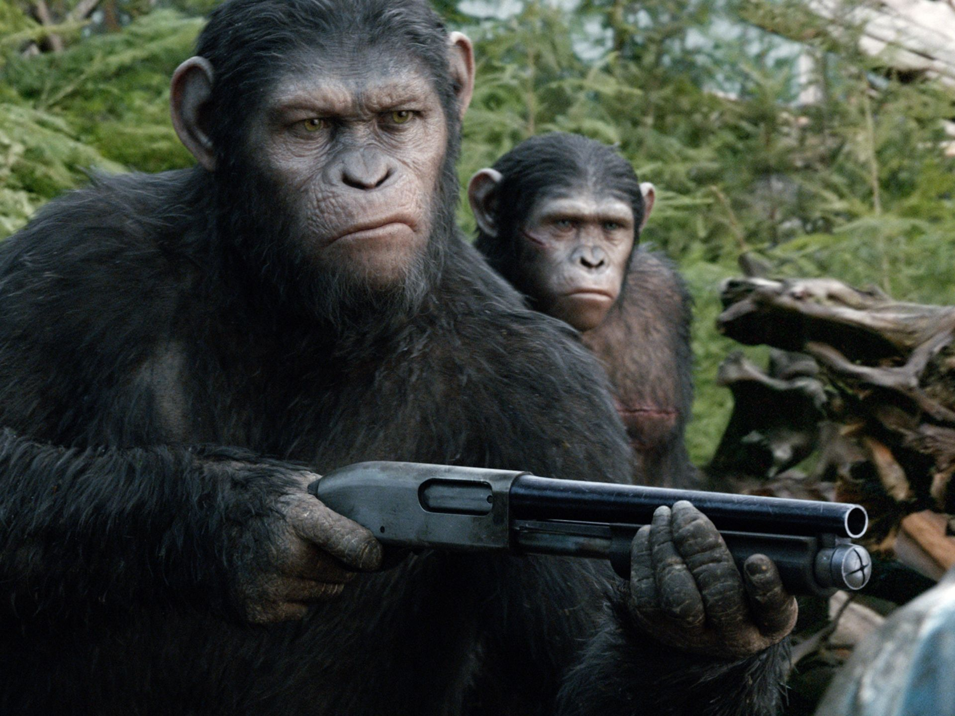 A marketing still from a cool shot I contributed to for 'Dawn of the Planet of the Apes'.