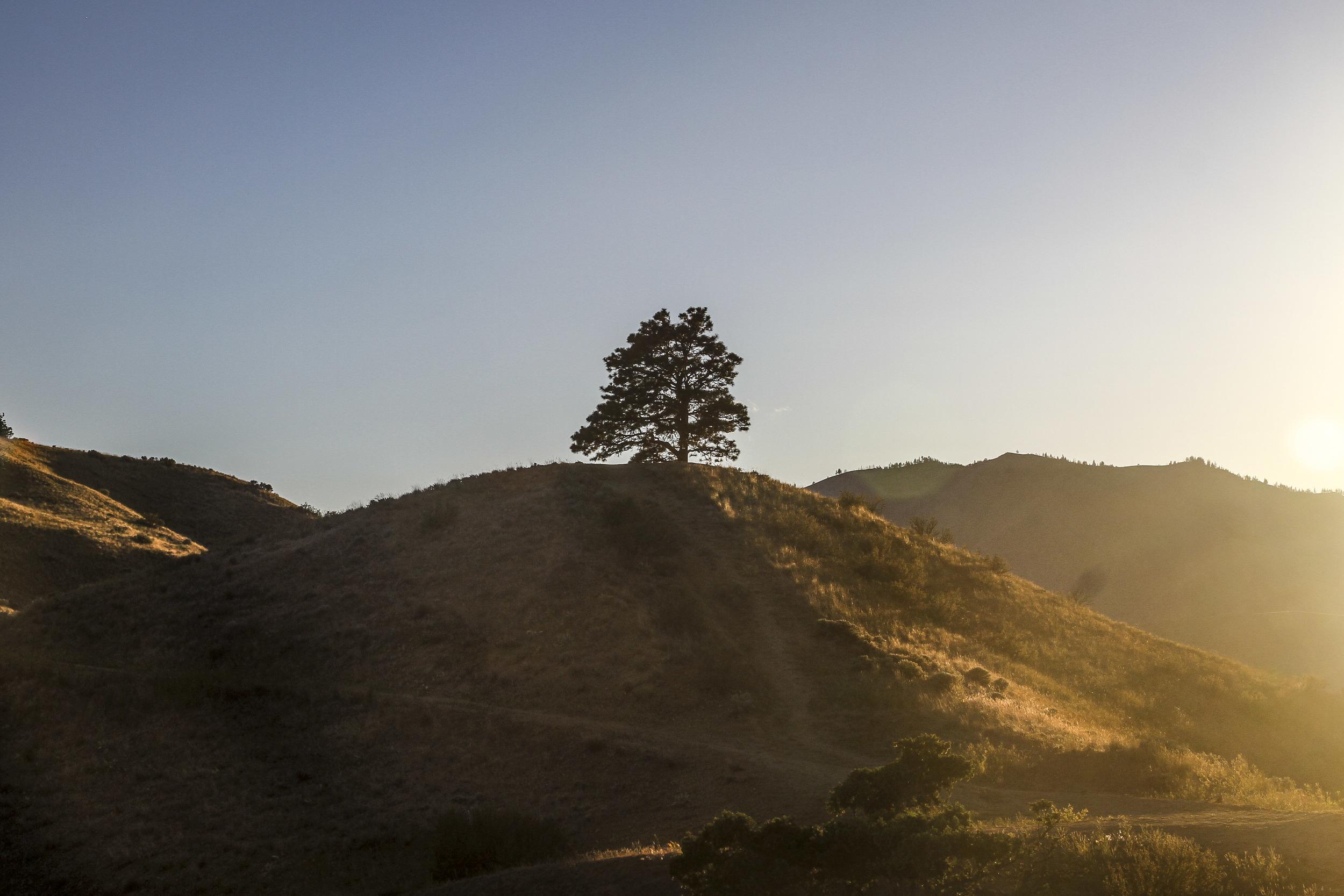 Hill of Wenatchee, WA