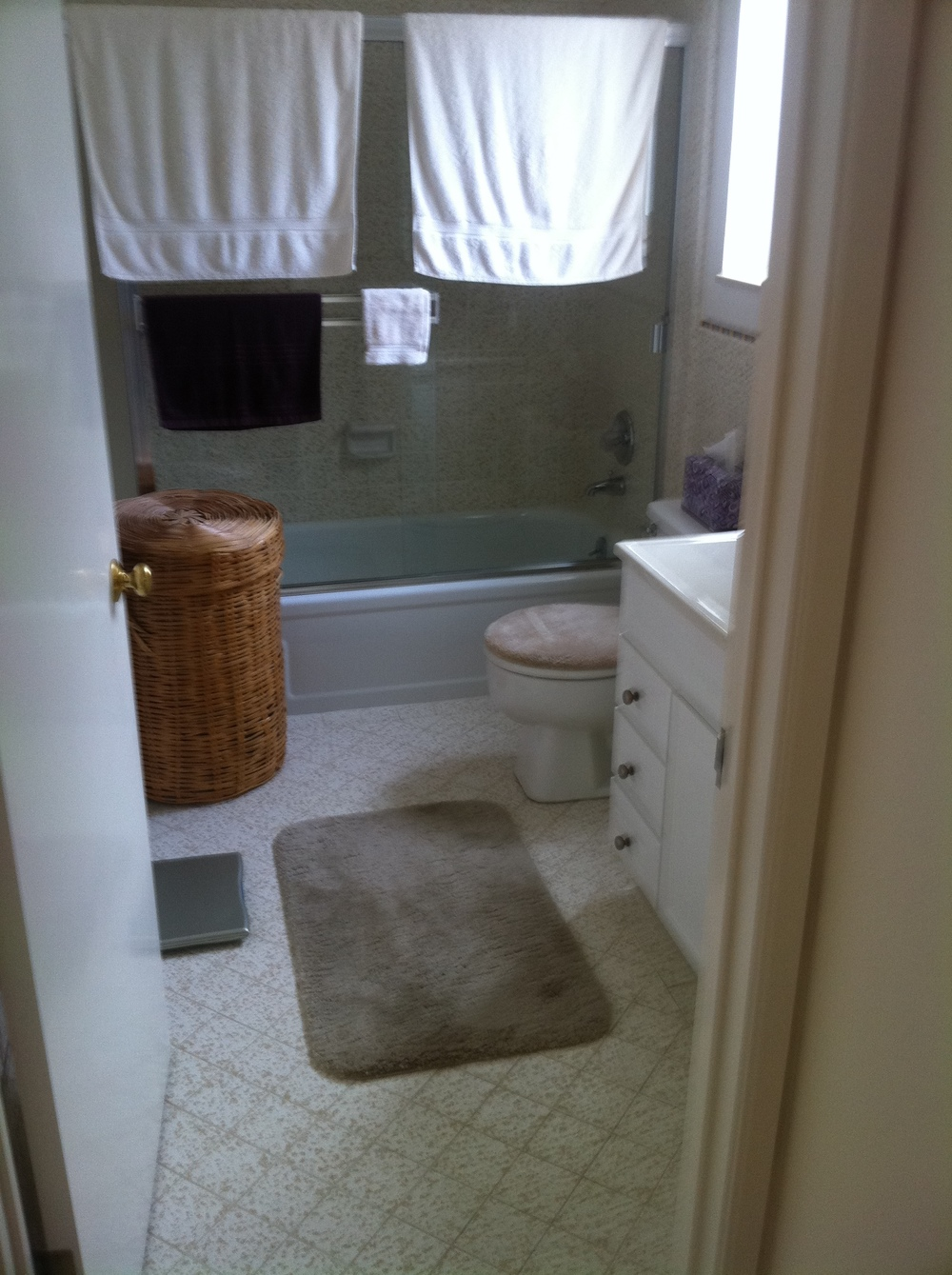 235 Laidley Bath Before.JPG