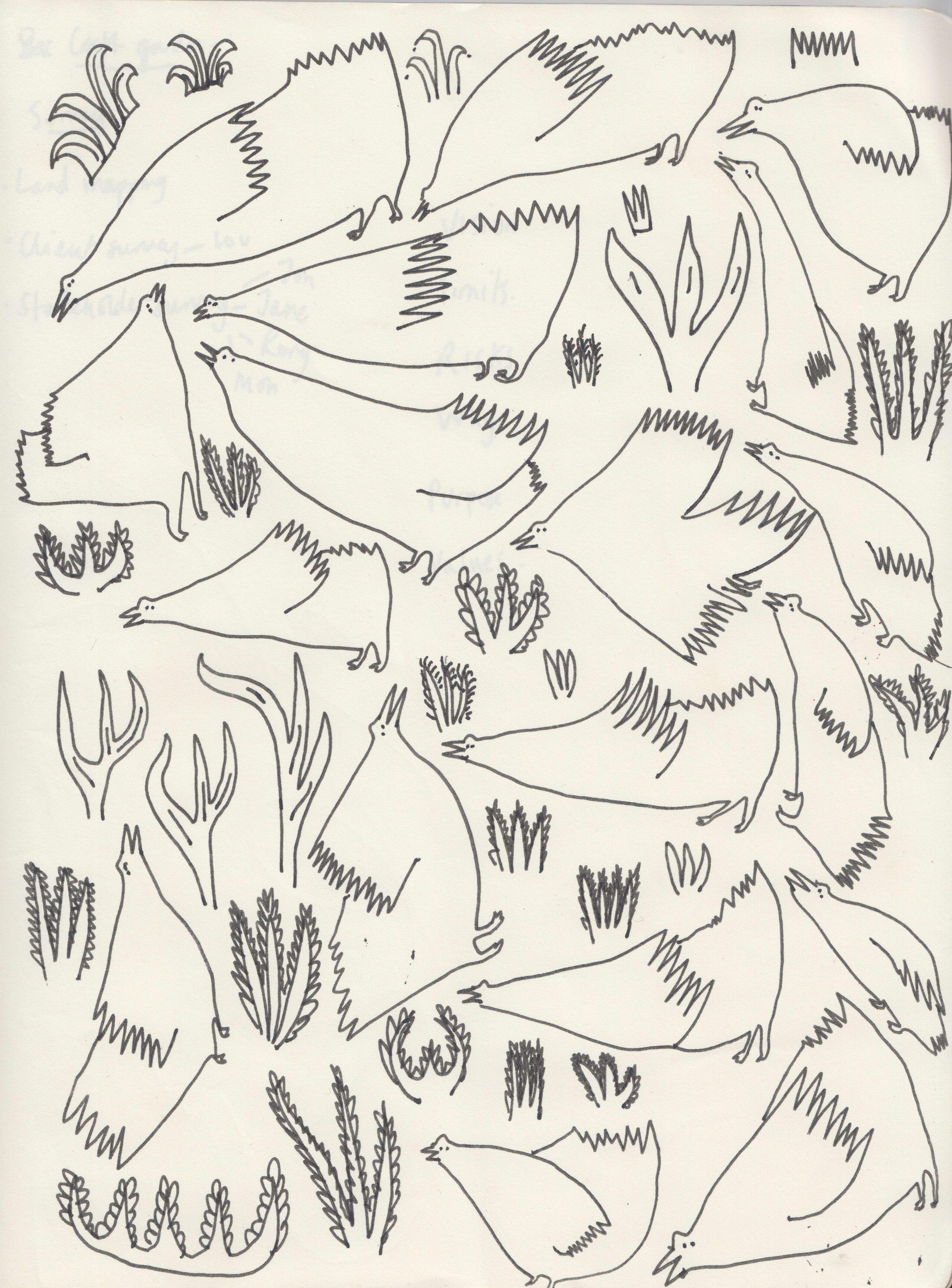 Birds 1 .jpg