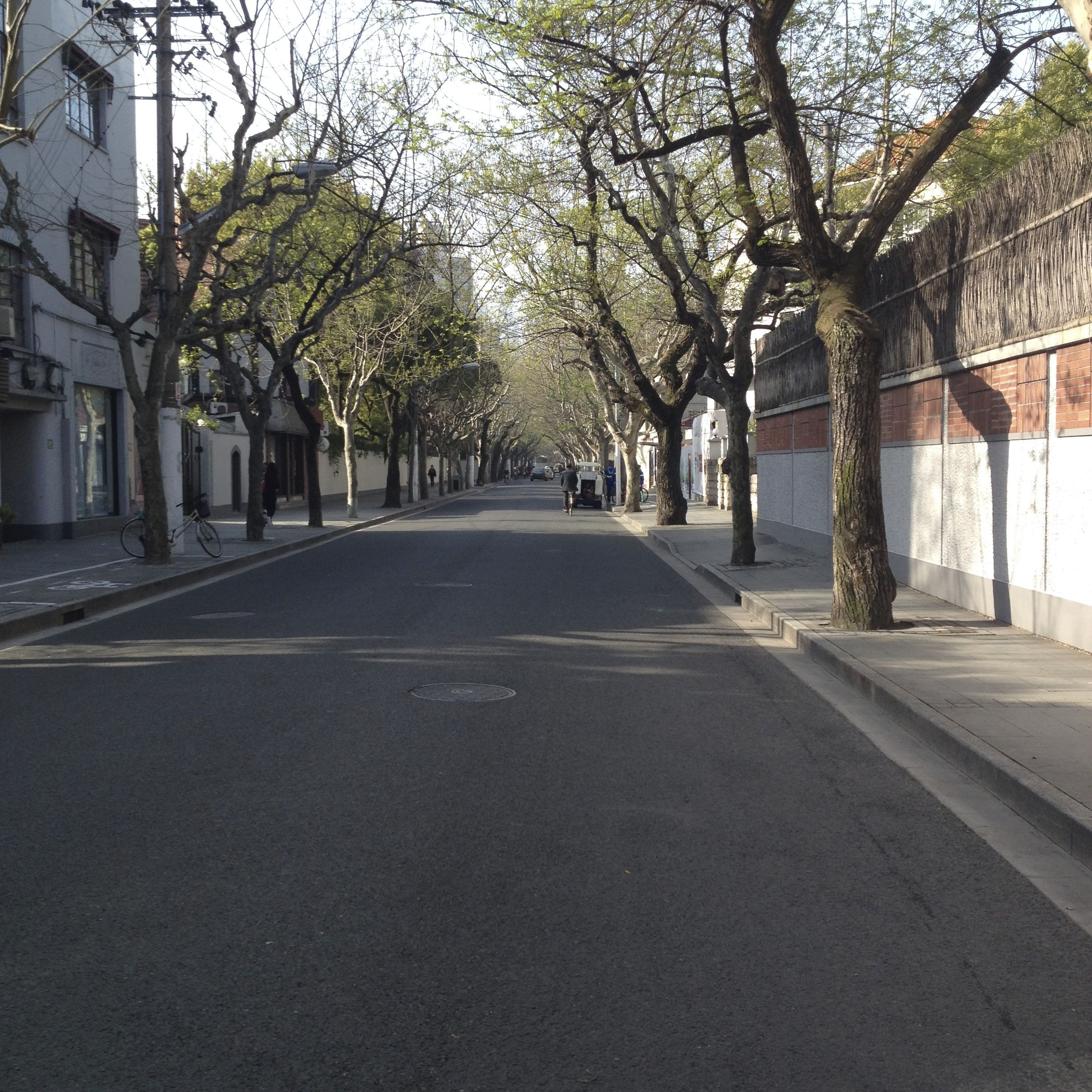 Quiet morning on Wukang Lu which I take to school everyday