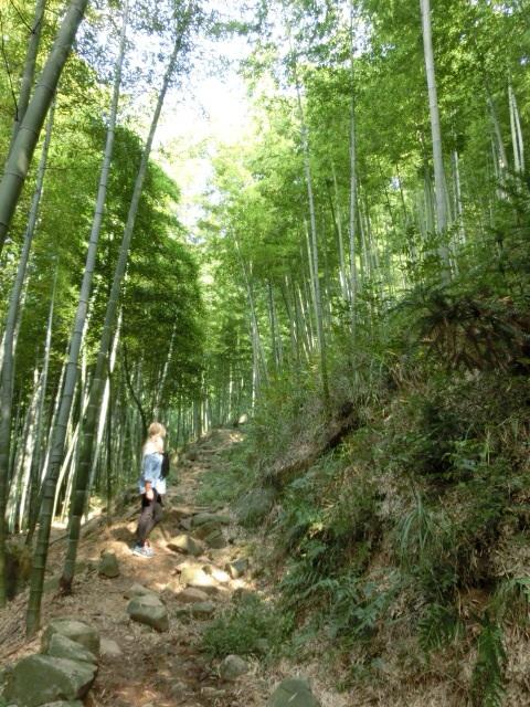 Hiking Moganshan