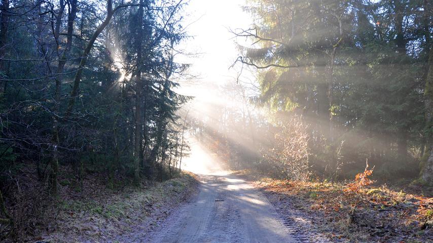 adgang til til naturen og landskabet.JPG