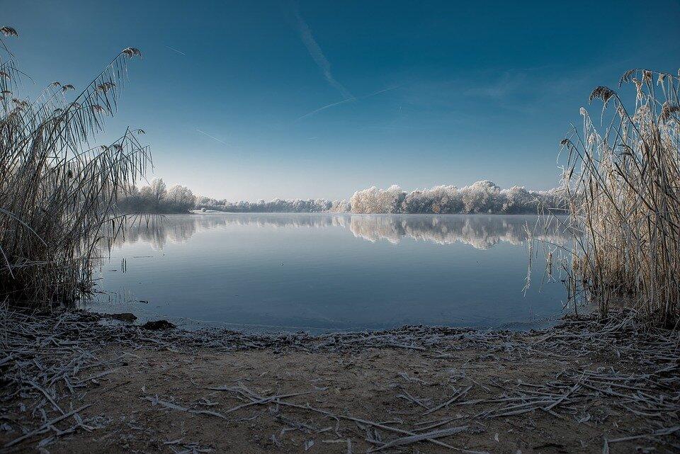 winter-1871102_960_720.jpg
