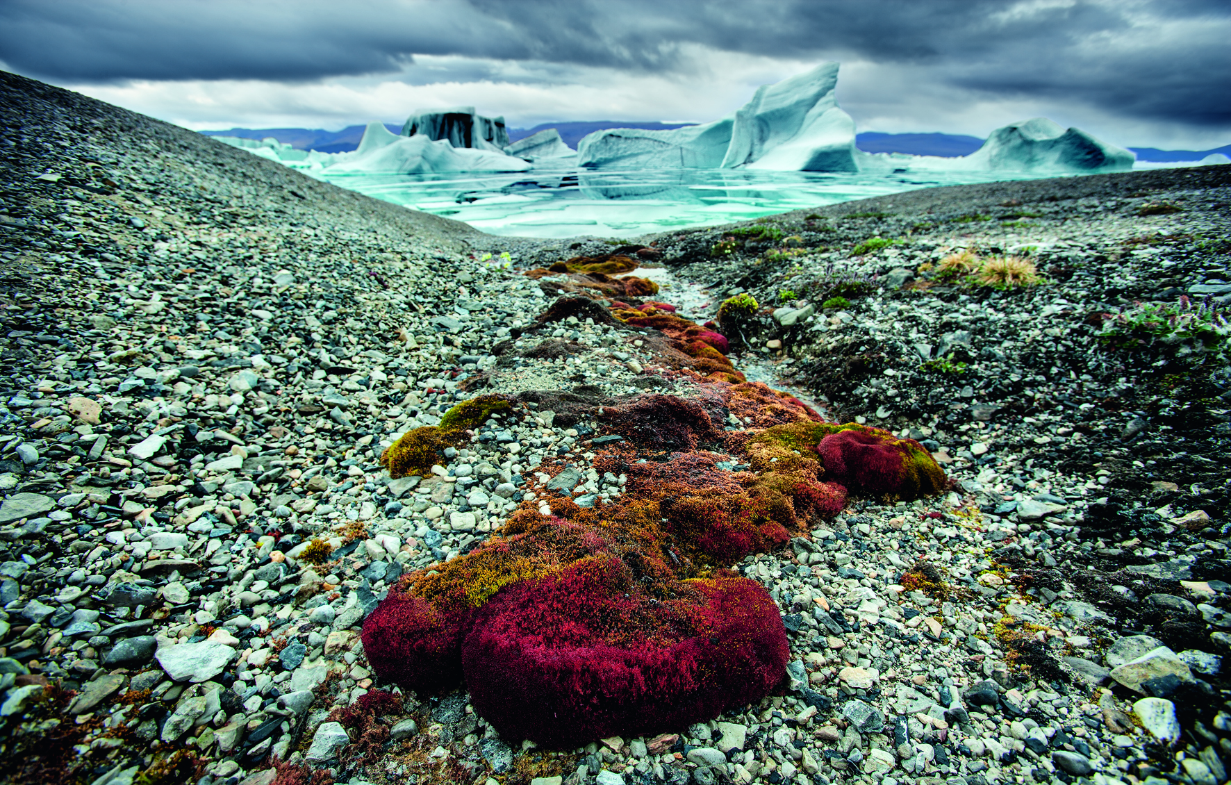 © Arctica: The Vanishing North by Sebastian Copeland, published by teNeues, www.teneues.com. Northern Greenland, Photo © 2015 Sebastian Copeland. All rights reserved. www.sebastiancopeland.com