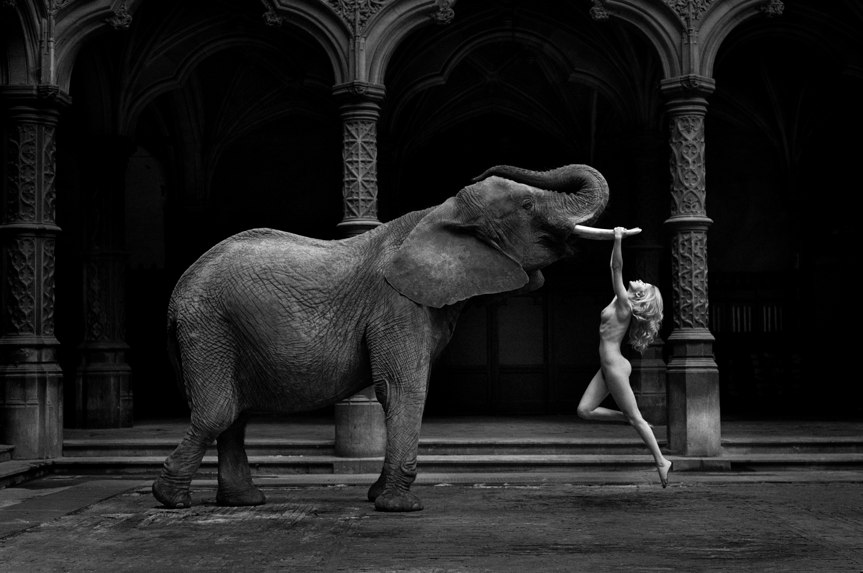 © Senza Parole by Marc Lagrange, to be published by teNeues in September 2015, www.teneues.com. Tusk, Photo © 2015 Marc Lagrange. All rights reserved.