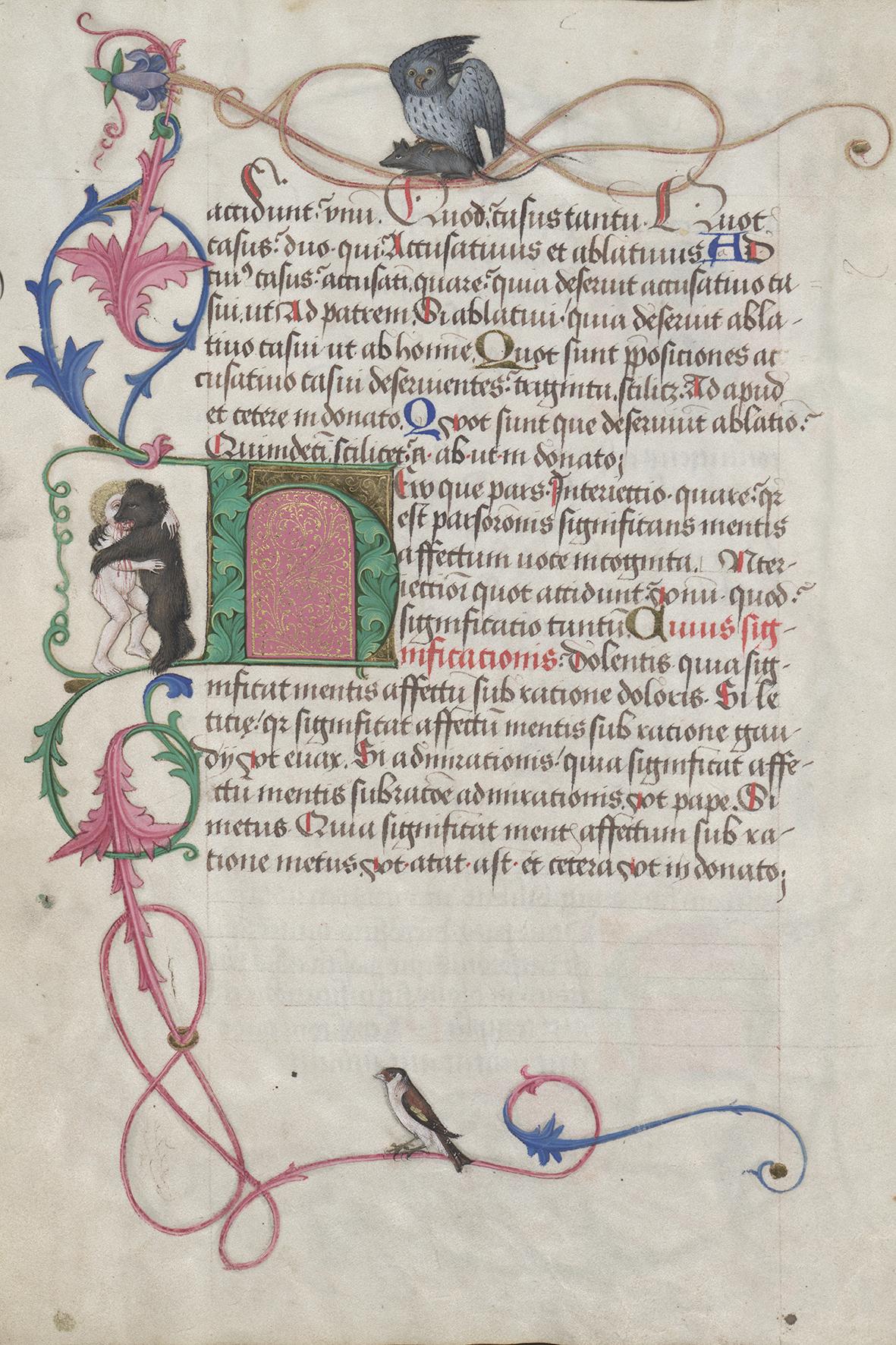 Randdekor mit Drolerien Grammatik-Lehrbuch (Donat) für Maximilian I. (1459–1519) Handschrift Wien, um 1465/66 Österreichische Nationalbibliothek
