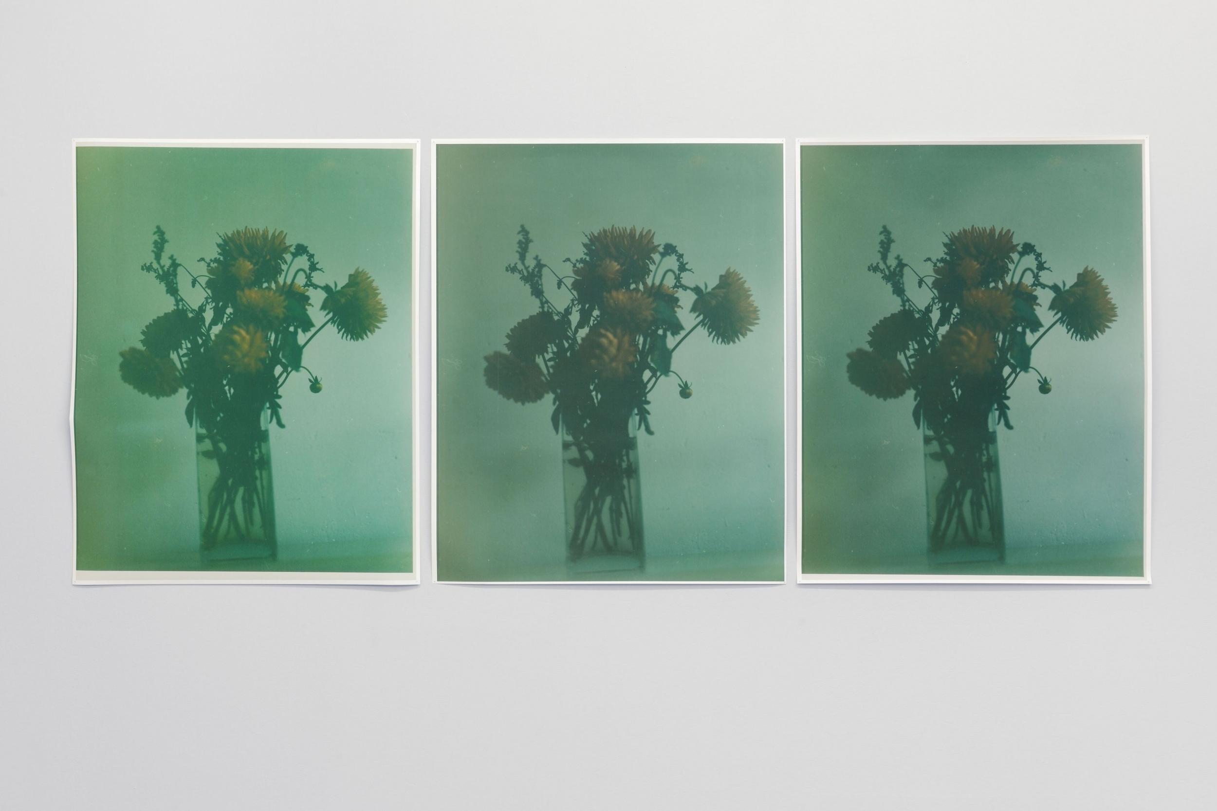 Inga Kerber  (Cliché of a Flower Bouquet) II, 2010-12  Pigmentdrucke, je 107 x 85 cm  © Inga Kerber