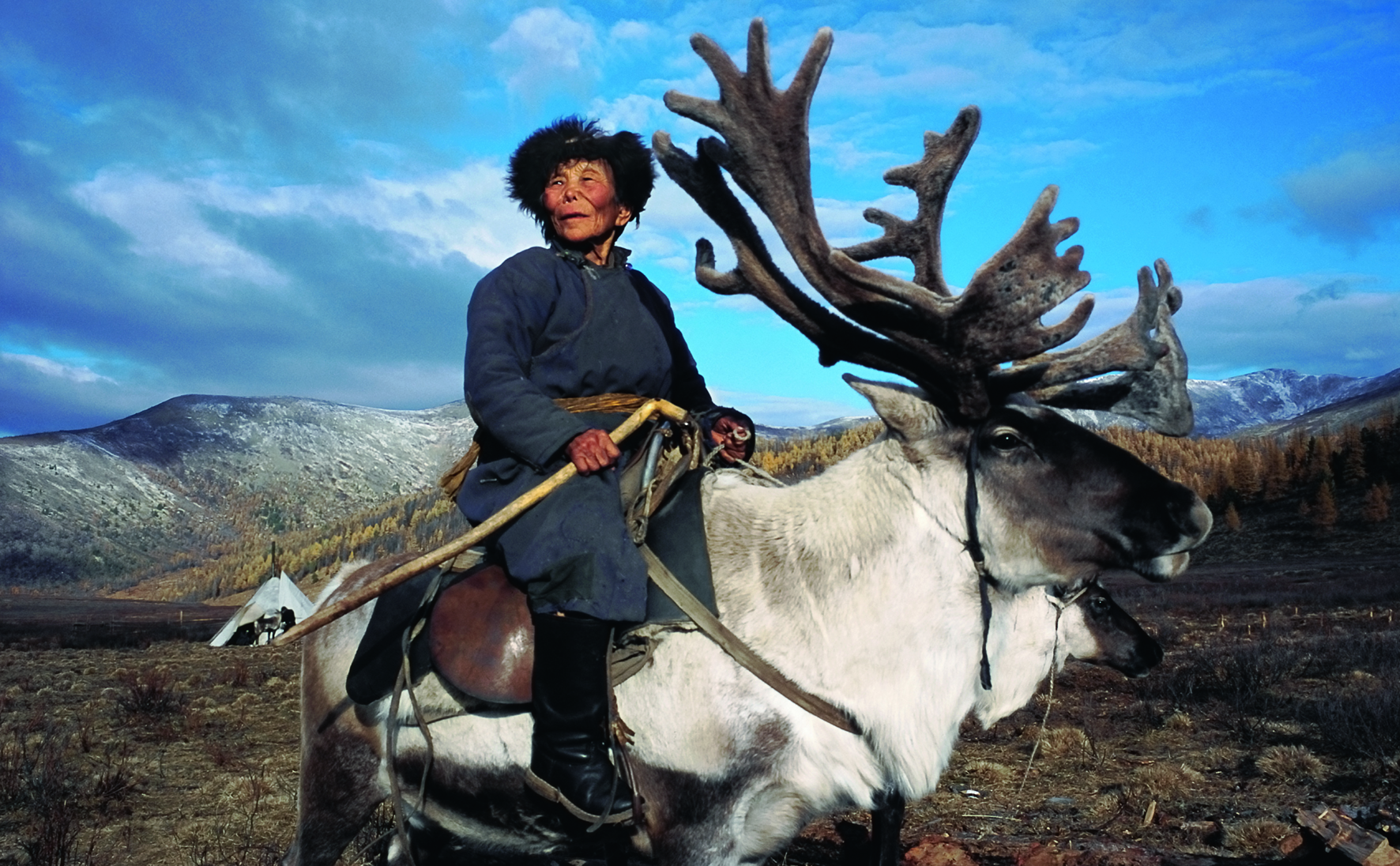 Shaman matriarch, West Taiga, Hovsgol Province, Mongolia, 2000   Photo © 2016 Hamid Sardar. All rights reserved.  www.hamidsardarphoto.com