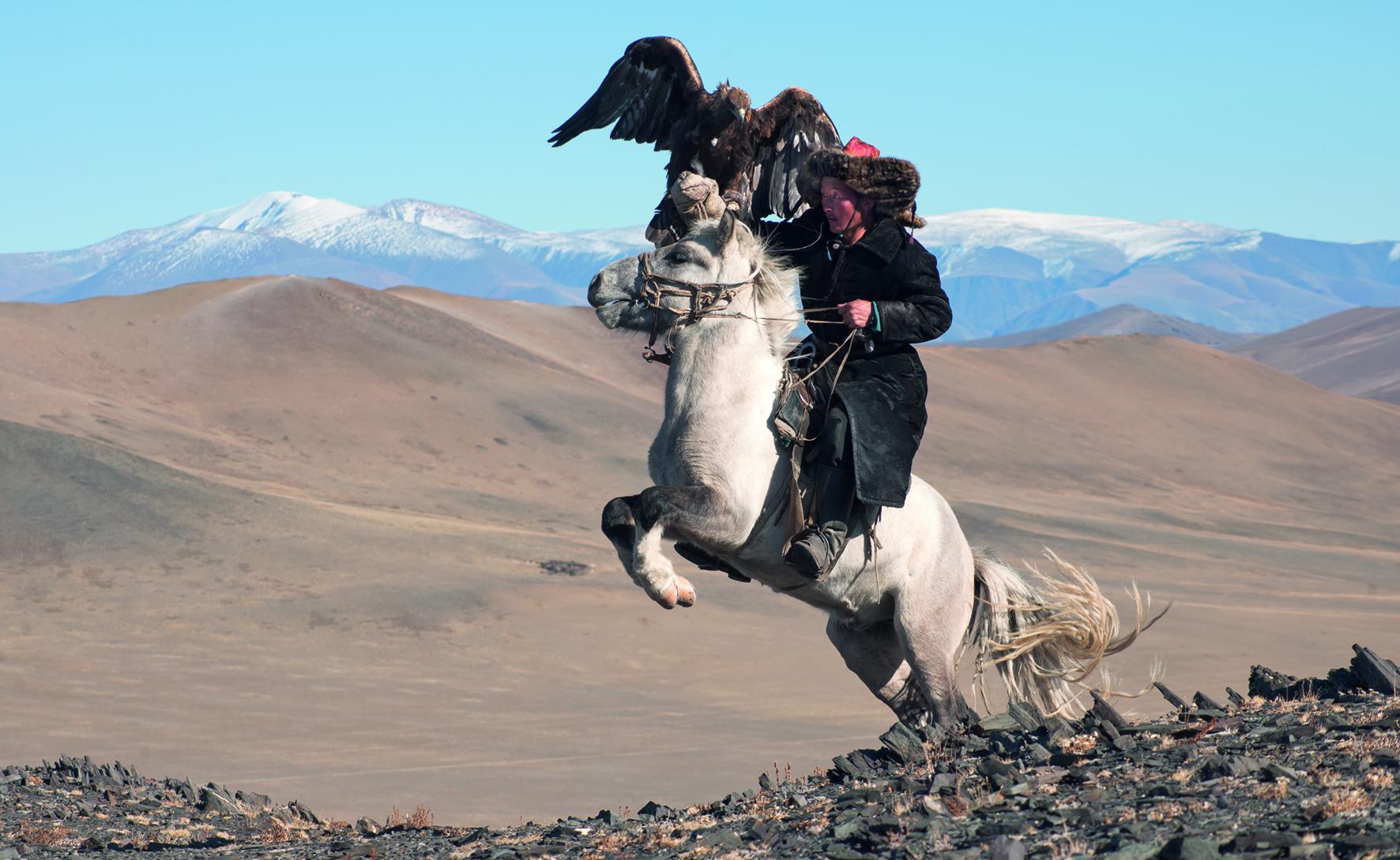 White Pegasus study I, Deloun Highlands, Olgii Province, Mongolia, 2010   Photo © 2016 Hamid Sardar. All rights reserved.  www.hamidsardarphoto.com