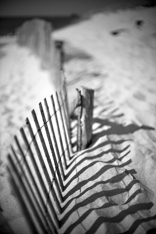 © Mark Strachan_Cape Cod Massachussets NOCTI with M-P
